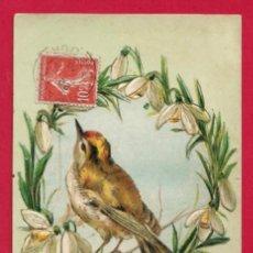 Postales: AE973 ANIMALES AVES PAJAROS RUISENOR Y CAMPANILLA DE INVIERNO POSTAL GOFRADA FECHA 1906. Lote 198497547