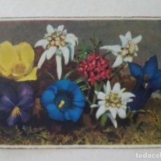 Postales: JARRON CON FLORES POSTAL CROMOLITOGRAFICA. Lote 212289105