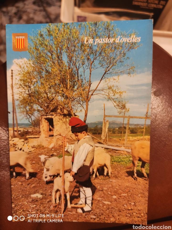 Postales: 19 postales Cataluña - Foto 16 - 215846552