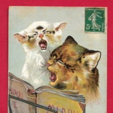 Postales: AE976 ANIMALES GATO GATOS MINOUS CONCERTO DE MIAOU CANTO. Lote 225467060