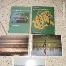 Postales: LOTE DE POSTALES. Lote 245358910