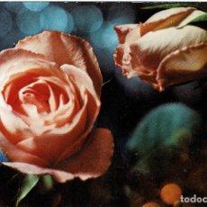 Postales: POSTAL ROSA - ESCUDO DE ORO SERIE 3060/3 ESCRITA -. Lote 253454970