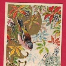 Postales: AD833 ANIMALES AVES PAJAROS PINZON POSTAL GOFRADA DEL PRINCIPIO DEL SIGLO. Lote 257387700
