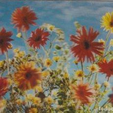 Cartes Postales: POSTAL - 3D - FLORES - RIGIDA - R 249 - ED ESCUDO DE ORO - AÑO 1972 - NUEVA. Lote 266459028