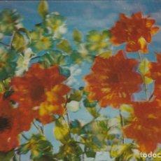 Postales: POSTAL - 3D - FLORES - RIGIDA - R 251 - ED ESCUDO DE ORO - AÑO 1972 - NUEVA. Lote 266459278