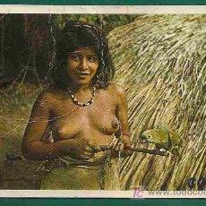 Postales: TARJETA POSTAL INDIA CAINGUA - PARAGUAY SEMI DESNUDA CON PAPAGAYO - CIRCULADA CERTIFICADA A ARGENTI. Lote 20983165