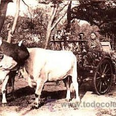 Postales: POSTAL DE ENGANCHE DEL PAIS VASCO. Lote 11298631
