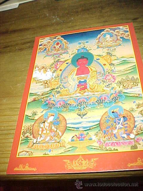 POSTAL BUDISTA DE AMITABHA BUDDHA. SURENDRA'S TIBETAN THANKA TREASURE. (Postales - Postales Temáticas - Étnicas)