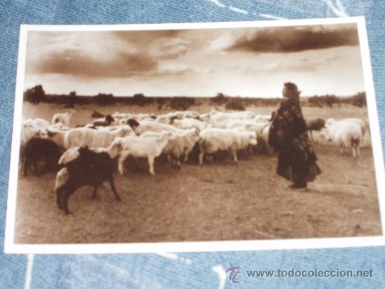 Postales: UNA PRINCESA INDIA: INDIOS/VAQUEROS + otra postal de regalo - Foto 2 - 32089648