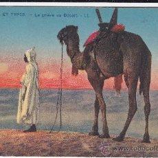Postcards - 6049 Scènes et Types La Prière au Désert Lévy y Neurdein Paris (sin circular) - 34846339
