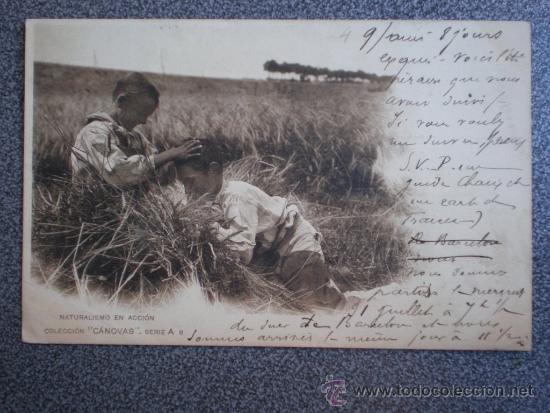 POSTAL AÑO 1901 NATURALISMO EN ACCIÓN COLECCIÓN CANOVAS (Postales - Postales Temáticas - Étnicas)