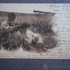 Postales: POSTAL AÑO 1901 NATURALISMO EN ACCIÓN COLECCIÓN CANOVAS. Lote 35584271