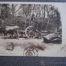 Postales: POSTAL AÑO 1901 CARGANDO LEÑA COLECCIÓN CANOVAS. Lote 35588310