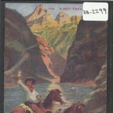 Postales: VAQUERO AMERICANO - COWBOY - (ZB-2299). Lote 49449207