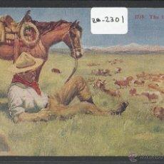 Postales: VAQUERO AMERICANO - COWBOY - (ZB-2301). Lote 49449818