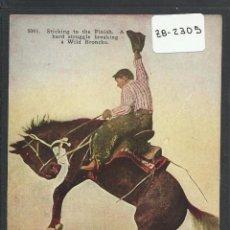 Postales: VAQUERO AMERICANO - COWBOY - (ZB-2305). Lote 49449883