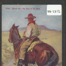 Postales: VAQUEROS AMERICANOS - COWBOYS - (ZB-2312). Lote 49449946
