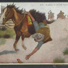Postales: VAQUEROS AMERICANOS - COWBOYS - (ZB-2313). Lote 49449953