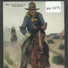 Postales: VAQUEROS AMERICANOS - COWBOYS - (ZB-2314). Lote 49449962