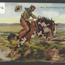 Postales: VAQUEROS AMERICANOS - COWBOYS - (ZB-2316). Lote 49450119