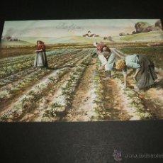 Postales: LABRADORES RECOLECTANDO POSTAL ANTERIOR A 1905 REVERSO SIN DIVIDIR. Lote 49680458