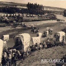 Postales: ROMERÍA DEL ROCIO- FOTOGRAFÍA MEDIDAS 17 X 11 CMS. Lote 51279066
