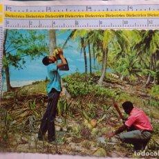 Postales: POSTAL ÉTNICA. CARIBE TROPICAL, LUGAREÑOS PARTIENDO Y BEBIENDO COCOS COCO. 966. Lote 62687344