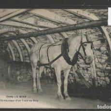 Postales: POSTAL ANTIGUA - ETNICA - COSTUMBRISTA -VER FOTOS-(46.868). Lote 78652517
