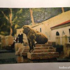 Postales: RM400 TARJETA POSTAL ORIGINAL AÑOS 20/30 ARABE ARGEL? COLECCION IDEALE P.S. MONO. Lote 79565941