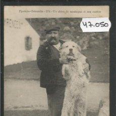 Postales: PERRO DE MONTAÑA -VER REVERSO -(47.050). Lote 81937956