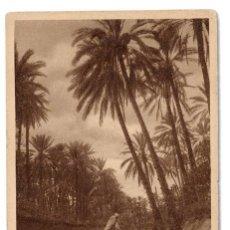 Postales: POSTAL 'DANS L'OASIS' DE LOS AÑOS 1910 L&L ÉDITEURS 141 - NO CIRCULADA. Lote 91022900