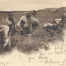 Postales: POSTAL LA SIEGA EN CASTILLA. COL. CÁNOVAS, SERIE D, 3. 1901.. Lote 111956127