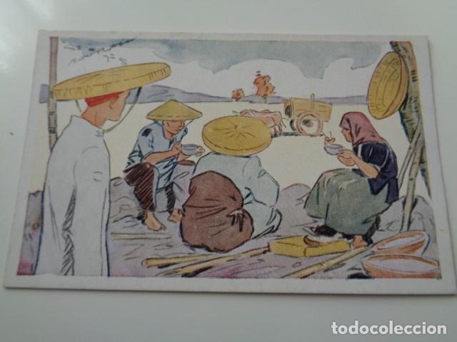 Postales: LE RIZ D`INDO-CHINE. LOTE DE 5 POSTALES ILUSTRADAS DE DICHA SERIE FRANCESA. SIN USO - Foto 2 - 141899934