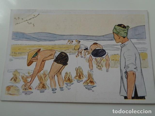 Postales: LE RIZ D`INDO-CHINE. LOTE DE 5 POSTALES ILUSTRADAS DE DICHA SERIE FRANCESA. SIN USO - Foto 3 - 141899934