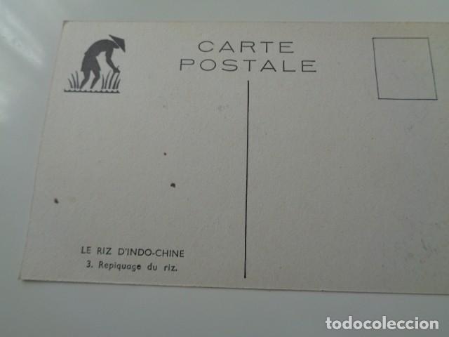 Postales: LE RIZ D`INDO-CHINE. LOTE DE 5 POSTALES ILUSTRADAS DE DICHA SERIE FRANCESA. SIN USO - Foto 7 - 141899934