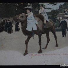 Postales: CAMELLOS Y DROMEDARIOS EN EL SAHARA , POSTAL CIRCULADA DEL AÑO 1904. Lote 150823586