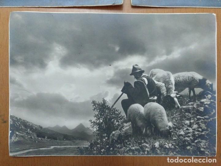 Postales: TRES POSTALES TEMA CAMPESTRE PASTOR CON OVEJAS 1939 CON SELLO CENSURA MILITAR BARCELONA - Foto 2 - 157341842