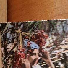 Postales: ANTIGUA POSTAL ETNICA DE ARGELIA - ALGERIE. Lote 173068258