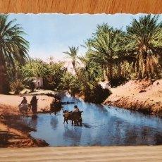 Postales: ANTIGUA POSTAL ETNICA DE ARGELIA - ALGERIE. Lote 173068393