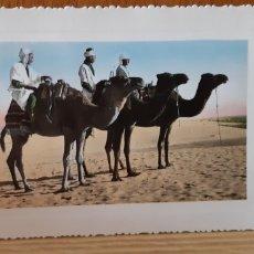 Postales: ANTIGUA POSTAL ETNICA DE ARGELIA - ALGERIE. Lote 173068470