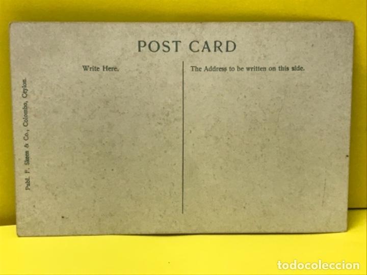 Postales: Indigenas postal coloreada nativos arco flechas sri lanka indios celylan sin circular - Foto 2 - 178088582