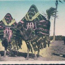 Postales: POSTAL BASSOURS OU HAREM MOBILES - DANS LE SUD - COLLECTION ARTISTIQUE L'AFRIQUE. Lote 194752396