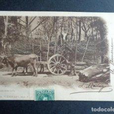 Postales: POSTAL LA BOYERA. COLECCIÓN CÁNOVAS. CARGANDO LEÑA. PRIMERA EDICIÓN. CIRCULADA. AÑO 1902. . Lote 197444955