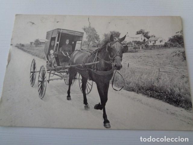 AMISHLAND. POSTAL CIRCULADA ESTADOS UNIDOS A ESPAÑA (Postales - Postales Temáticas - Étnicas)