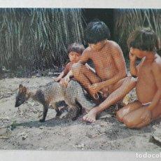 Postales: INDIOS LAUALAPITI XINGU BRASIL POSTAL. Lote 205598801