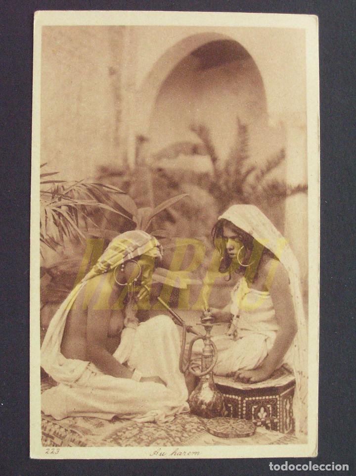 POSTAL EDICIONES LEHNERT & LANDROCK Nº 223 - EN HAREM (Postales - Postales Temáticas - Étnicas)