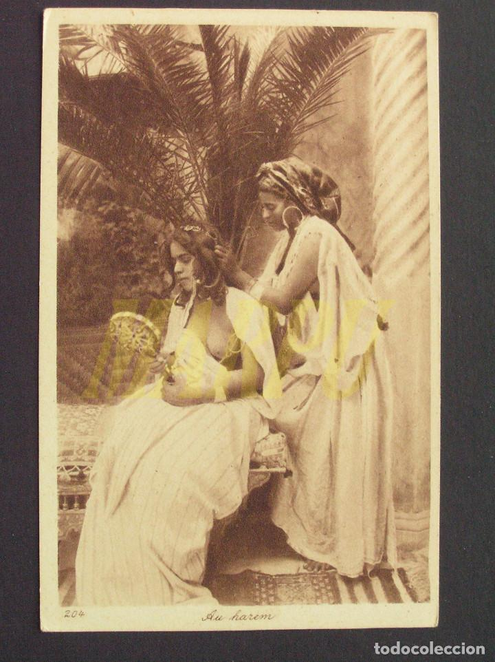POSTAL EDICIONES LEHNERT & LANDROCK Nº 204 - EN HAREM (Postales - Postales Temáticas - Étnicas)