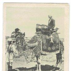 Postales: YEMEN, ADEN, ARABIAN CHIEF'S CAMEL, , SIN DIVIDIR, CIRCULADA CON SU SELLO. Lote 209795417