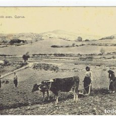 Postais: CYPRUS, PLOUGHING WITH OXEN, SIN DIVIDIR, CIRCULADA SELLO PERDIDO. Lote 209808675