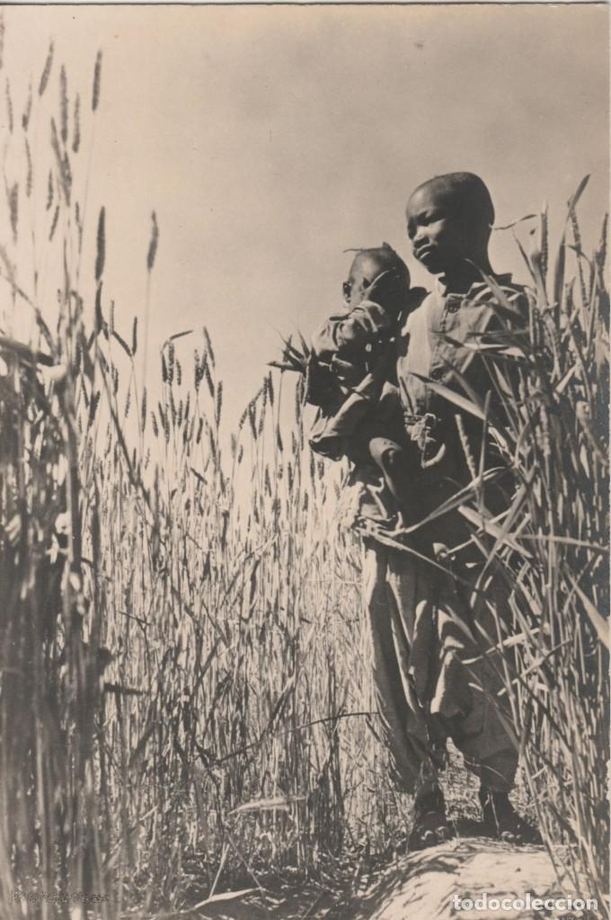 LOTE V-POSTAL TIPICA ETNICA AFRICA (Postales - Postales Temáticas - Étnicas)